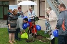 Продолжение посадки деревьев в честь Дня Европейского Сотрудничества в Бальви, Латвия