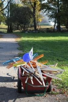 AQUA LIFE: коллективный сбор мусора в 10 приграничных муниципалитетах отметил День Европейского сотрудничества