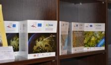 INFROM: результаты научного сотрудничества для мониторинга трансграничных природно-технологических систем
